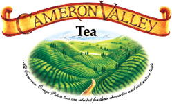 cameron_valley_home_logo